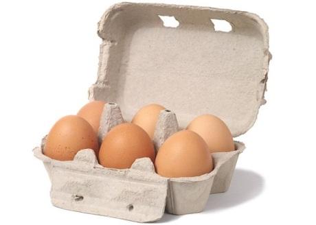 biologische eieren, scharrel eieren of uitloop eieren
